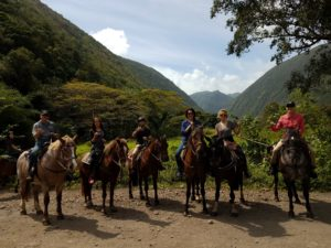 VMC-Media-Hawaii-Trip-horse-riding-300x225 Hawaii Trip